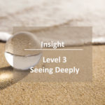 level-3-insight