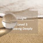 level-3-insight