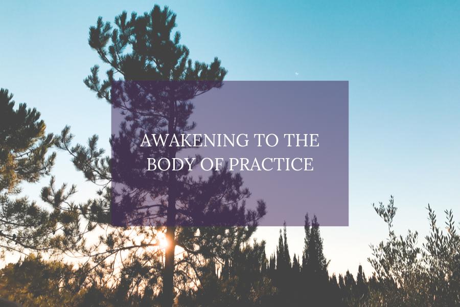Awakening to the Body of Practice