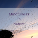 Mindfulness in Nature