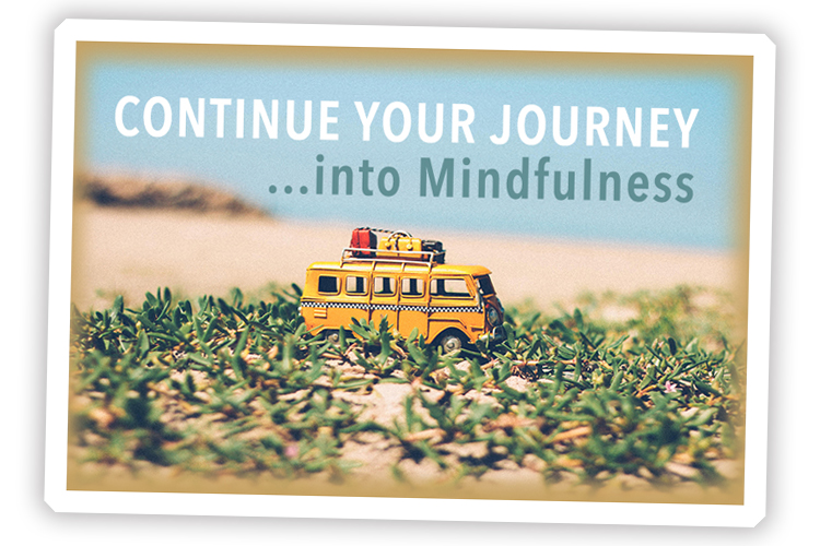 mindfulness level one online