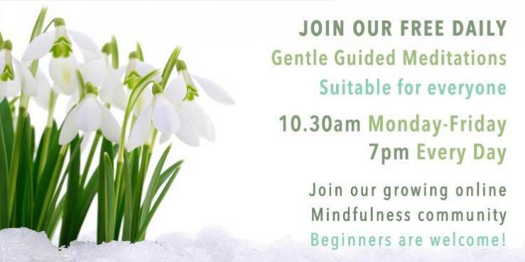 FREE Daily Online Mindfulness Meditation