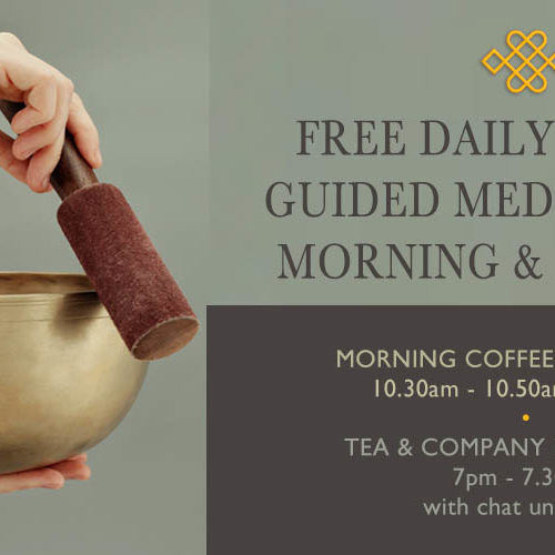 free-daily-online-meditation