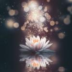 Integrating Compassion & Wisdom