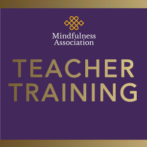 TEACHER TRAINING BOX 4